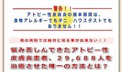 アトピー稲葉01.jpg